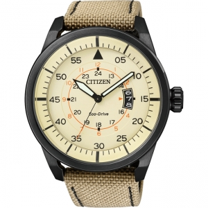 Citizen Eco-Drive Aviator AW1365-19P Watch Strap 22mm