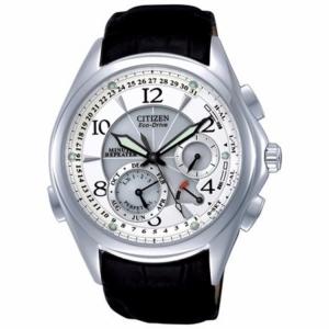 Citizen Eco-Drive BL9000-32A Watch Strap 21mm