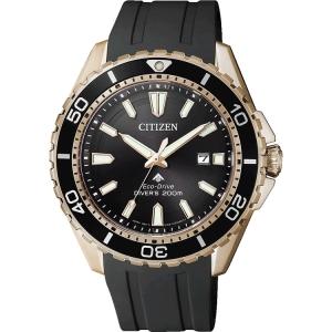 Citizen Promaster Eco-Drive BN0193-17E Watch Strap 22mm