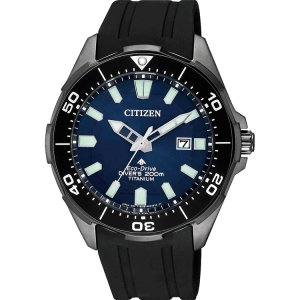 Citizen Promaster Eco-Drive BN0205-10L Watch Strap 22mm
