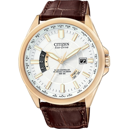 Citizen Eco-Drive Radio Controlled CB0013-04A Watch Strap 23mm
