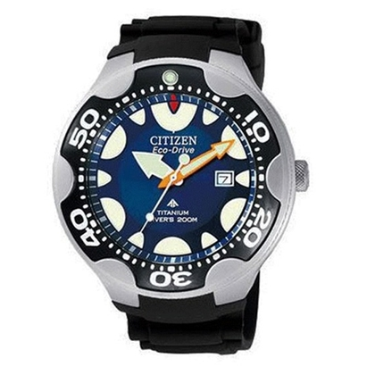 Citizen Eco-Drive Diver BN0019-06L Watch Strap 14mm
